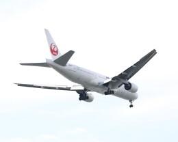 不揃いさんが、羽田空港で撮影した日本航空 777-289の航空フォト(飛行機 写真・画像)