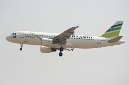 NIKEさんが、ドバイ国際空港で撮影したフライナス A320-214の航空フォト(飛行機 写真・画像)