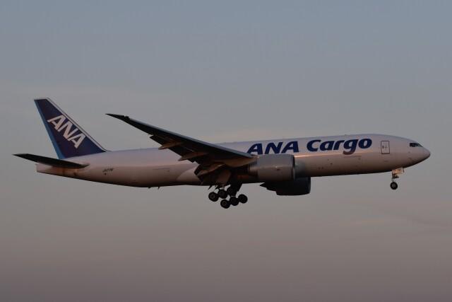 PIRORINGさんが、成田国際空港で撮影した全日空 777-F81の航空フォト(飛行機 写真・画像)