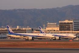 Hiro-hiroさんが、伊丹空港で撮影した全日空 777-381の航空フォト(飛行機 写真・画像)