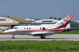 サンドバンクさんが、入間飛行場で撮影した航空自衛隊 U-125 (BAe-125-800FI)の航空フォト(飛行機 写真・画像)