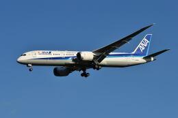yotaさんが、成田国際空港で撮影した全日空 787-9の航空フォト(飛行機 写真・画像)