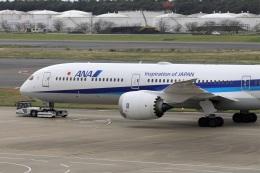 kan787allさんが、成田国際空港で撮影した全日空 787-10の航空フォト(飛行機 写真・画像)
