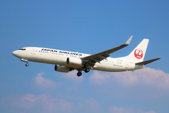 えのびよーんさんが、福岡空港で撮影した日本航空 737-846の航空フォト(飛行機 写真・画像)