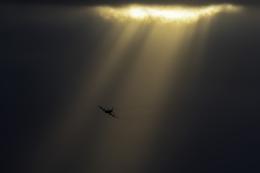 K.Sさんが、那覇空港で撮影した海上自衛隊 P-3Cの航空フォト(飛行機 写真・画像)