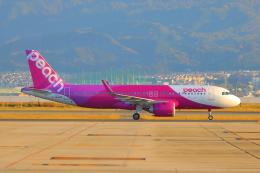 た~きゅんさんが、関西国際空港で撮影したピーチ A320-251Nの航空フォト(飛行機 写真・画像)