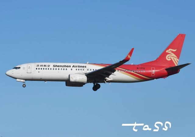 tassさんが、成田国際空港で撮影した深圳航空 737-87Lの航空フォト(飛行機 写真・画像)