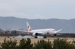 元青森人さんが、松島基地で撮影した日本航空 787-8 Dreamlinerの航空フォト(飛行機 写真・画像)