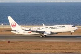 ドラパチさんが、中部国際空港で撮影した日本トランスオーシャン航空 737-8Q3の航空フォト(飛行機 写真・画像)