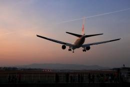 Hiro-hiroさんが、伊丹空港で撮影した日本航空 777-289の航空フォト(飛行機 写真・画像)