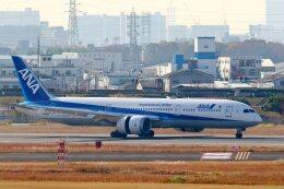 khideさんが、伊丹空港で撮影した全日空 787-9の航空フォト(飛行機 写真・画像)