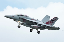 wetwingさんが、厚木飛行場で撮影したアメリカ海軍 EA-18G Growlerの航空フォト(飛行機 写真・画像)