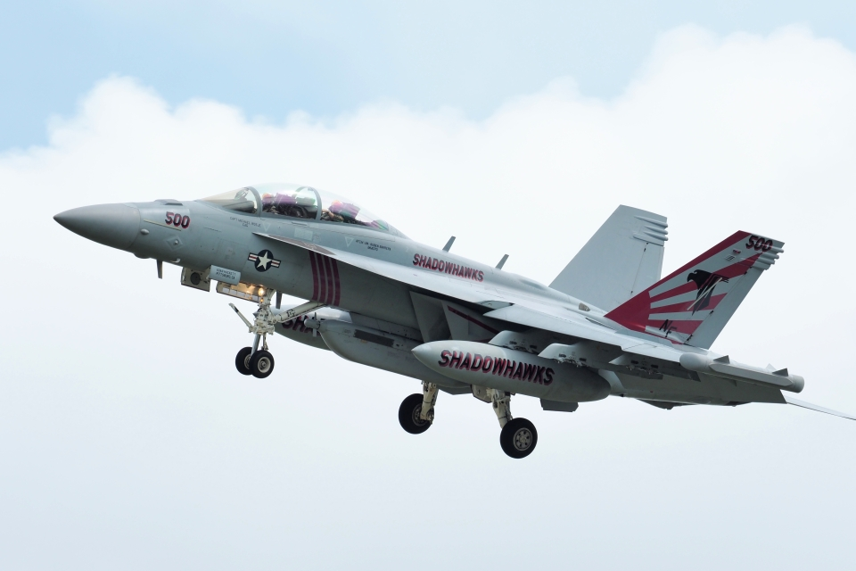 wetwingさんのアメリカ海軍 Boeing F/A-18 (168893) 航空フォト