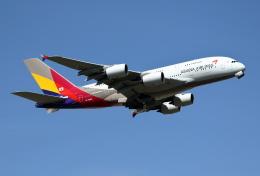 航空フォト:HL7640 アシアナ航空 A380