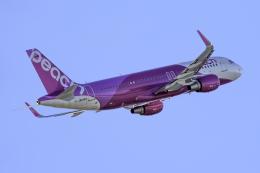 K.Sさんが、那覇空港で撮影したピーチ A320-214の航空フォト(飛行機 写真・画像)