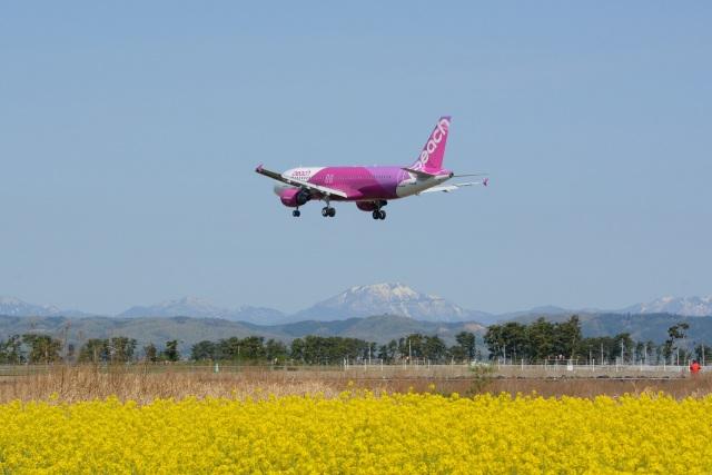Mark-5さんが、仙台空港で撮影したピーチ A320-214の航空フォト(飛行機 写真・画像)