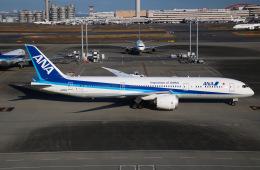 えのびよーんさんが、羽田空港で撮影した全日空 787-9の航空フォト(飛行機 写真・画像)