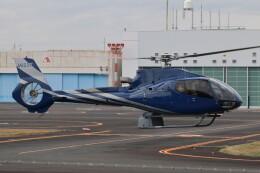 だびでさんが、東京ヘリポートで撮影した静岡エアコミュータ EC130B4の航空フォト(飛行機 写真・画像)