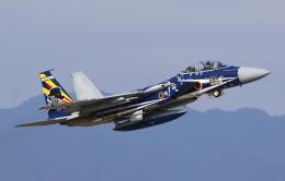 VIPERさんが、新田原基地で撮影した航空自衛隊 F-15DJ Eagleの航空フォト(飛行機 写真・画像)