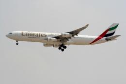 NIKEさんが、ドバイ国際空港で撮影したエミレーツ航空 A340-313Xの航空フォト(飛行機 写真・画像)