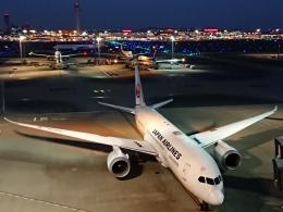 ceskykrumlovさんが、羽田空港で撮影した日本航空 787-8 Dreamlinerの航空フォト(飛行機 写真・画像)