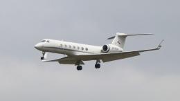 raichanさんが、成田国際空港で撮影した金鹿航空 G-V-SP Gulfstream G550の航空フォト(飛行機 写真・画像)