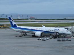 TradelView FUKUROさんが、那覇空港で撮影した全日空 787-9の航空フォト(飛行機 写真・画像)