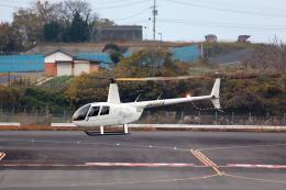 express999さんが、高松空港で撮影した日本個人所有 R44 Raven IIの航空フォト(飛行機 写真・画像)