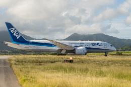 delawakaさんが、石垣空港で撮影した全日空 787-8 Dreamlinerの航空フォト(飛行機 写真・画像)