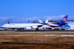 キットカットさんが、成田国際空港で撮影したタイ国際航空 A340-642の航空フォト(飛行機 写真・画像)