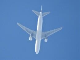 いねねさんが、中部国際空港で撮影した日本航空 767-346/ERの航空フォト(飛行機 写真・画像)