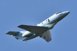 ワイエスさんが、新田原基地で撮影した航空自衛隊 U-125A(Hawker 800)の航空フォト(飛行機 写真・画像)