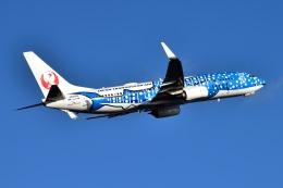リョウさんが、羽田空港で撮影した日本トランスオーシャン航空 737-8Q3の航空フォト(飛行機 写真・画像)