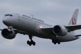 BOEING737MAX-8さんが、成田国際空港で撮影した日本航空 787-9の航空フォト(飛行機 写真・画像)