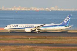 あおとりさんが、羽田空港で撮影した全日空 787-9の航空フォト(飛行機 写真・画像)