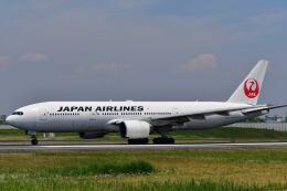 天心さんが、伊丹空港で撮影した日本航空 777-289の航空フォト(飛行機 写真・画像)