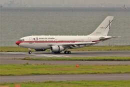 OMAさんが、羽田空港で撮影したスペイン空軍 A310-304の航空フォト(飛行機 写真・画像)