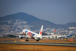 miny_poodleさんが、伊丹空港で撮影した日本航空 767-346/ERの航空フォト(飛行機 写真・画像)
