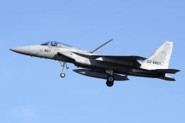 Flankerさんが、岐阜基地で撮影した航空自衛隊 F-15J Eagleの航空フォト(飛行機 写真・画像)