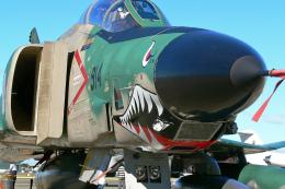 スカルショットさんが、名古屋飛行場で撮影した航空自衛隊 RF-4E Phantom IIの航空フォト(飛行機 写真・画像)