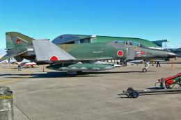 スカルショットさんが、名古屋飛行場で撮影した航空自衛隊 RF-4EJ Phantom IIの航空フォト(飛行機 写真・画像)