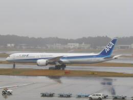 F.YUKIHIDEさんが、成田国際空港で撮影した全日空 787-10の航空フォト(飛行機 写真・画像)