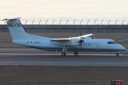 BOEING737MAX-8さんが、中部国際空港で撮影した国土交通省 航空局 DHC-8-315Q Dash 8の航空フォト(飛行機 写真・画像)