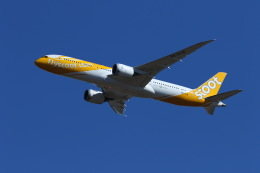 マーサさんが、成田国際空港で撮影したスクート 787-9の航空フォト(飛行機 写真・画像)