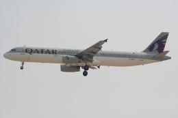 NIKEさんが、ドバイ国際空港で撮影したカタール航空 A321-231の航空フォト(飛行機 写真・画像)