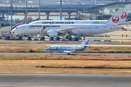 ハム太郎。さんが、羽田空港で撮影した海上保安庁 Falcon 2000EXの航空フォト(飛行機 写真・画像)