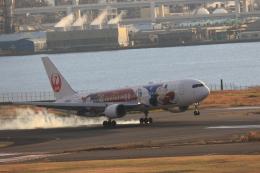 ゆう.さんが、羽田空港で撮影した日本航空 767-346/ERの航空フォト(飛行機 写真・画像)