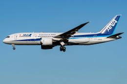 I.Kさんが、成田国際空港で撮影した全日空 787-8 Dreamlinerの航空フォト(飛行機 写真・画像)