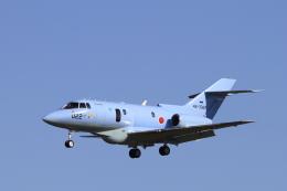 non-nonさんが、新田原基地で撮影した航空自衛隊 U-125A(Hawker 800)の航空フォト(飛行機 写真・画像)