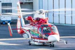 KANTO61さんが、ホンダエアポートで撮影した埼玉県防災航空隊 AS365N3 Dauphin 2の航空フォト(飛行機 写真・画像)